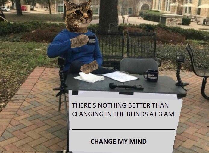The blindssss - meme