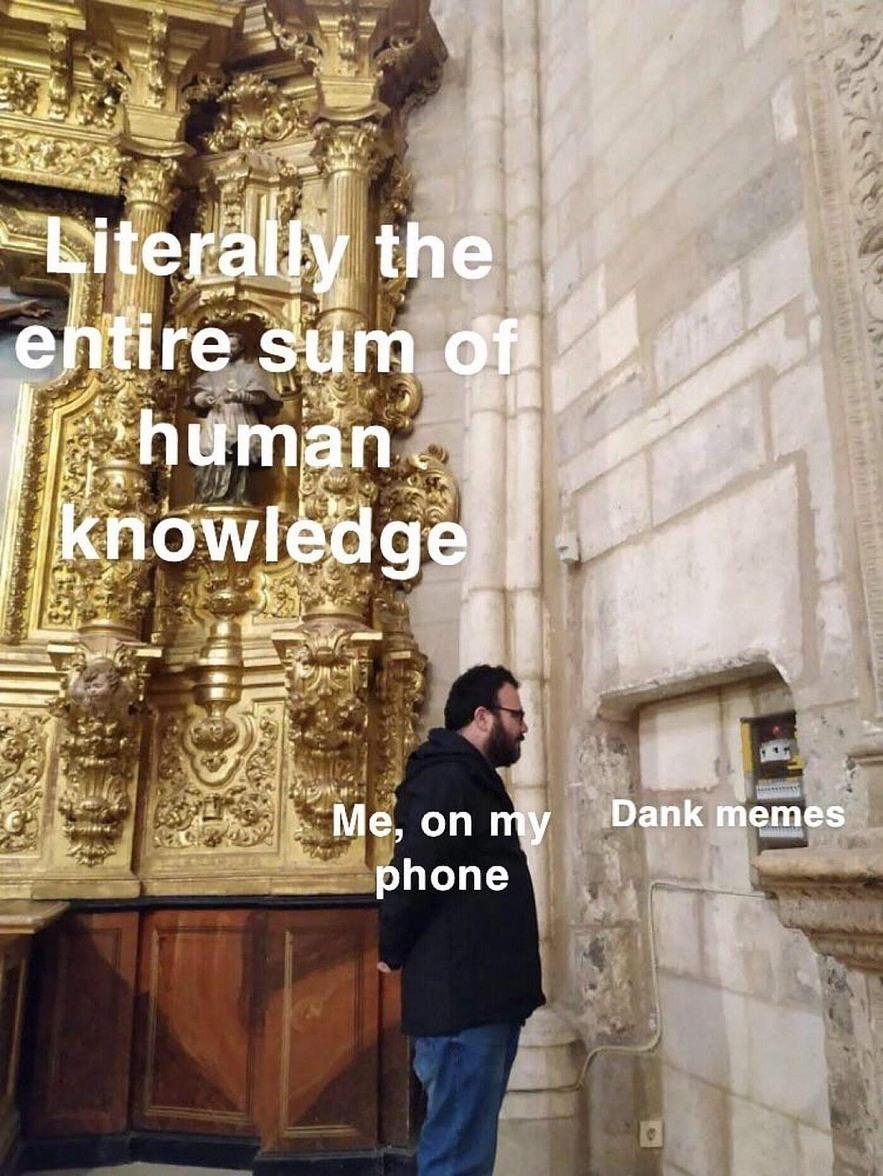 wise choice - meme