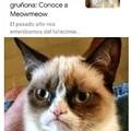 F en el chat por grumpy