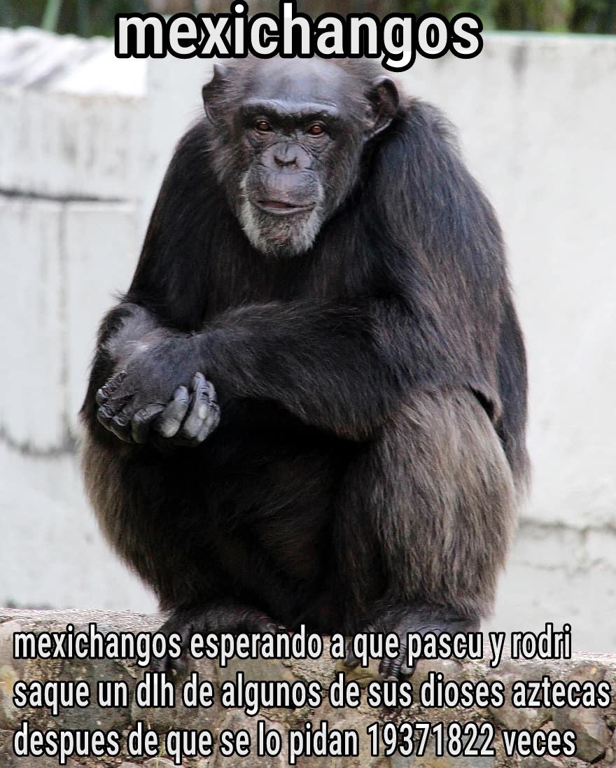 SaQuen un DlH de qEtzalCoAt - meme