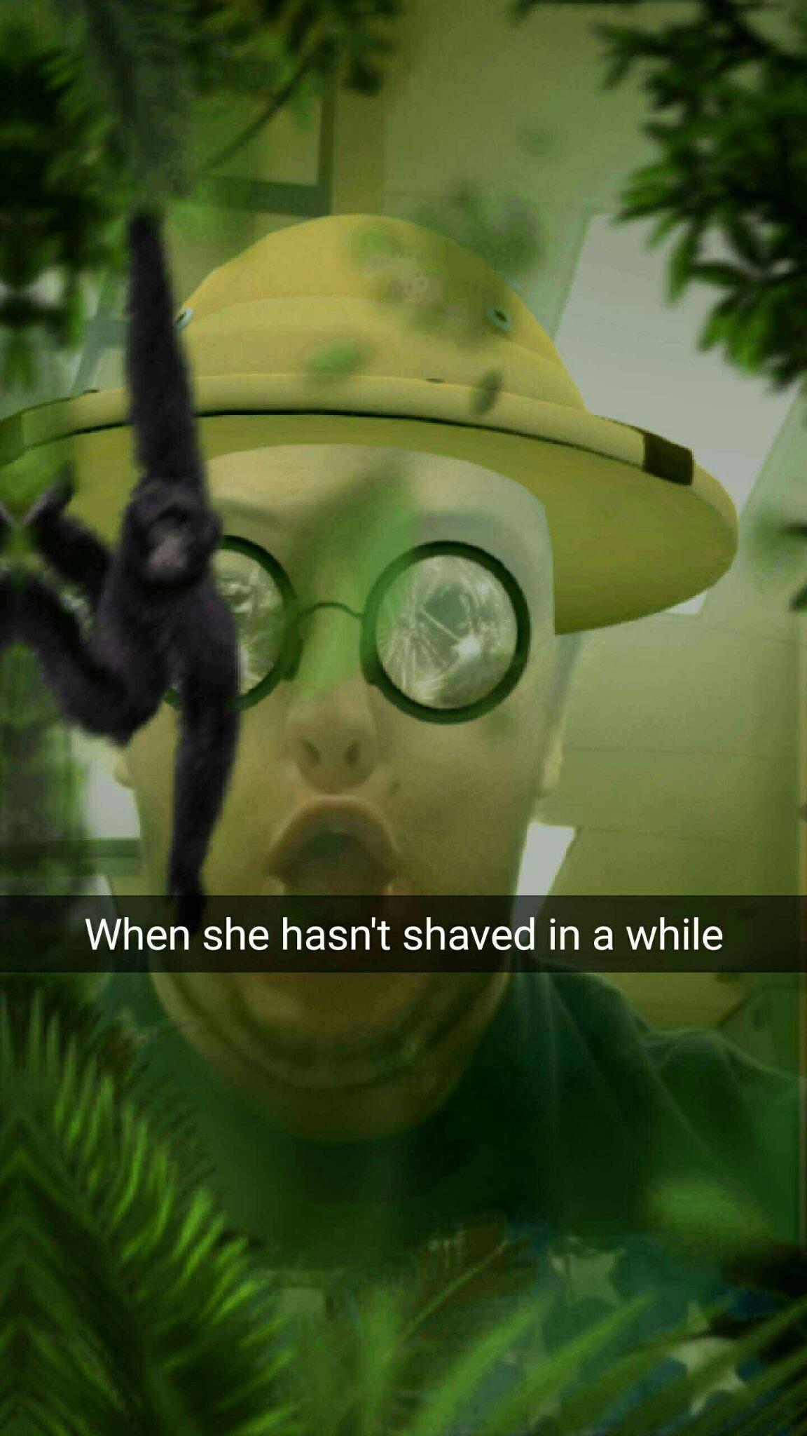 Le bush - meme