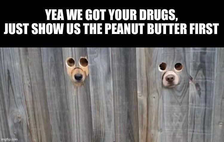 Yo homedog down the street hooks it up fat - meme