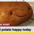 Local potato happy today