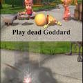 Goddard why