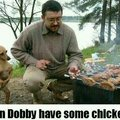 Give dobby some chicken