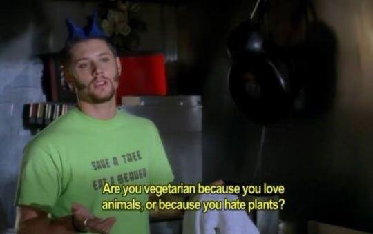 vegetarians please respond - meme