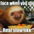 Sloth bitches