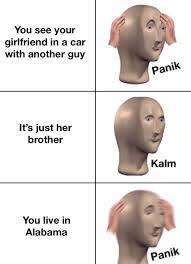 PANIK - meme