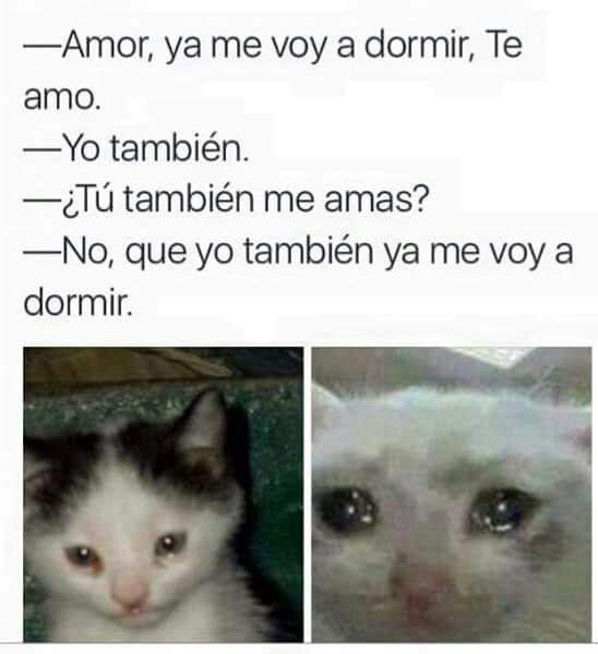Putabida - meme