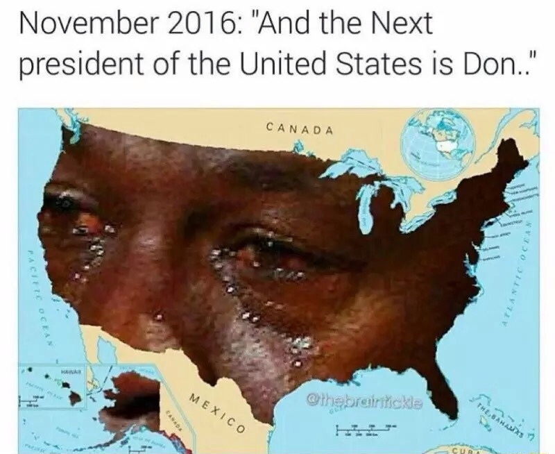 The whole U.S. would do this - meme