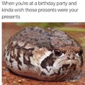 First comment is an angry frog.