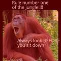 Rule 1 of de jooongle