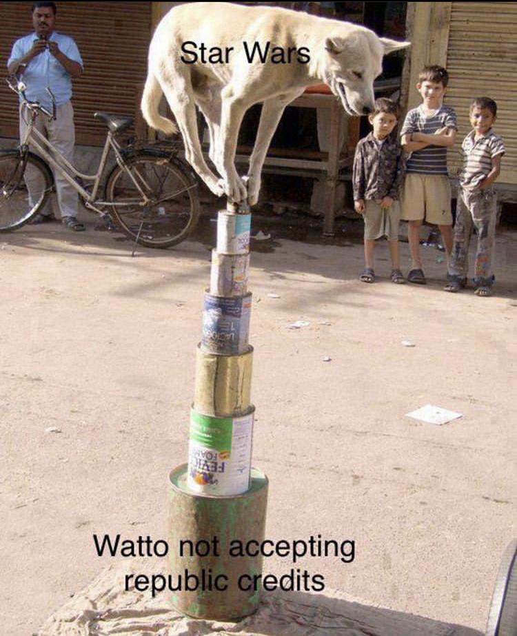Watto - meme