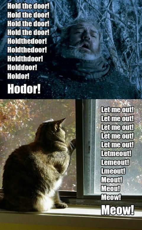 Hold the Door - meme