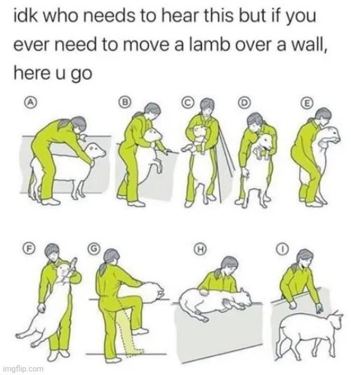 The mark of the lamb - meme