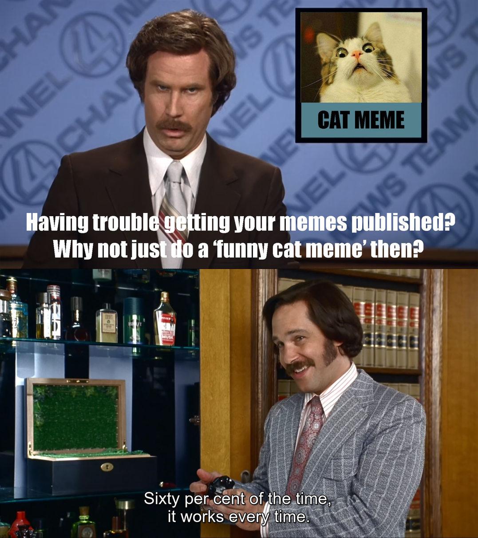 'Funny' Cat Memes