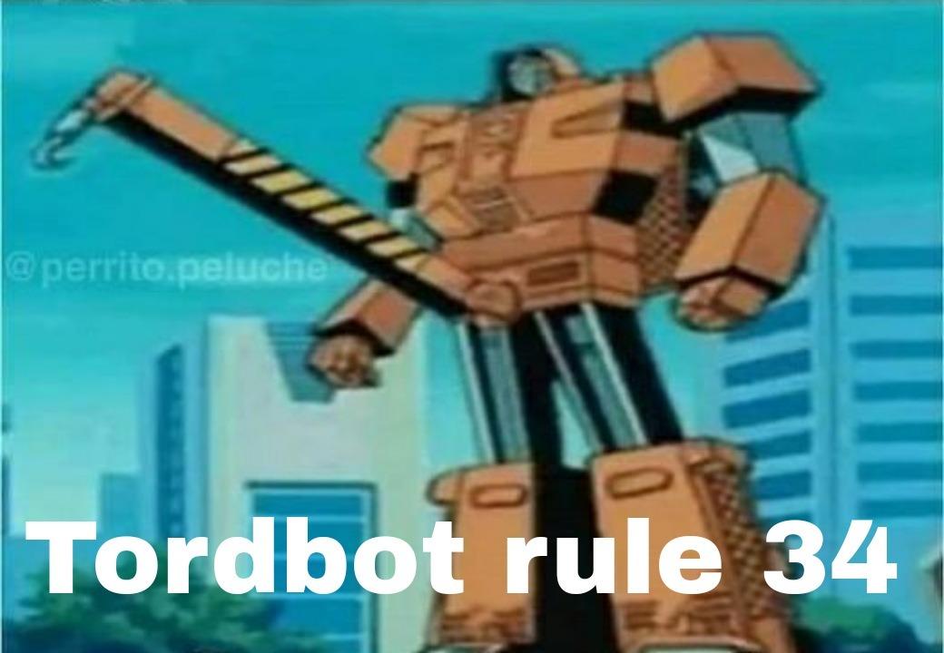 Tord bot - meme