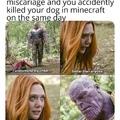 my dog killed himself