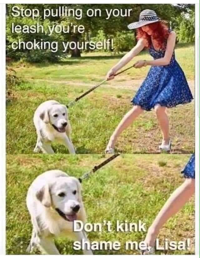 Doggo has needs - meme