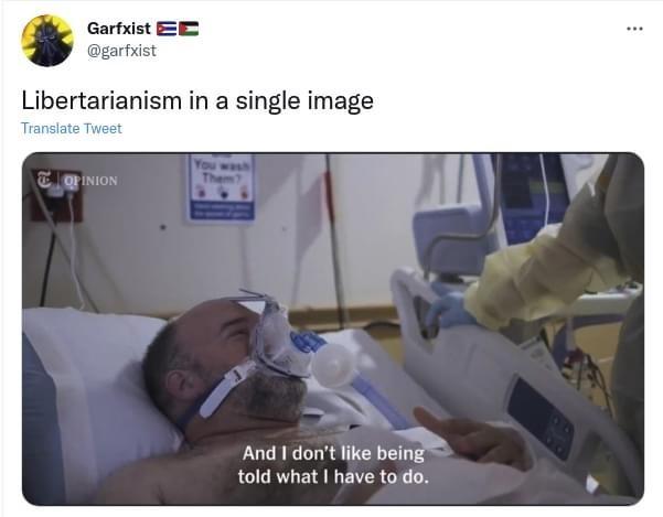libertarianism in a single image - meme