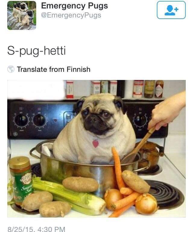 Spughetti - meme
