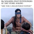 Registered voter