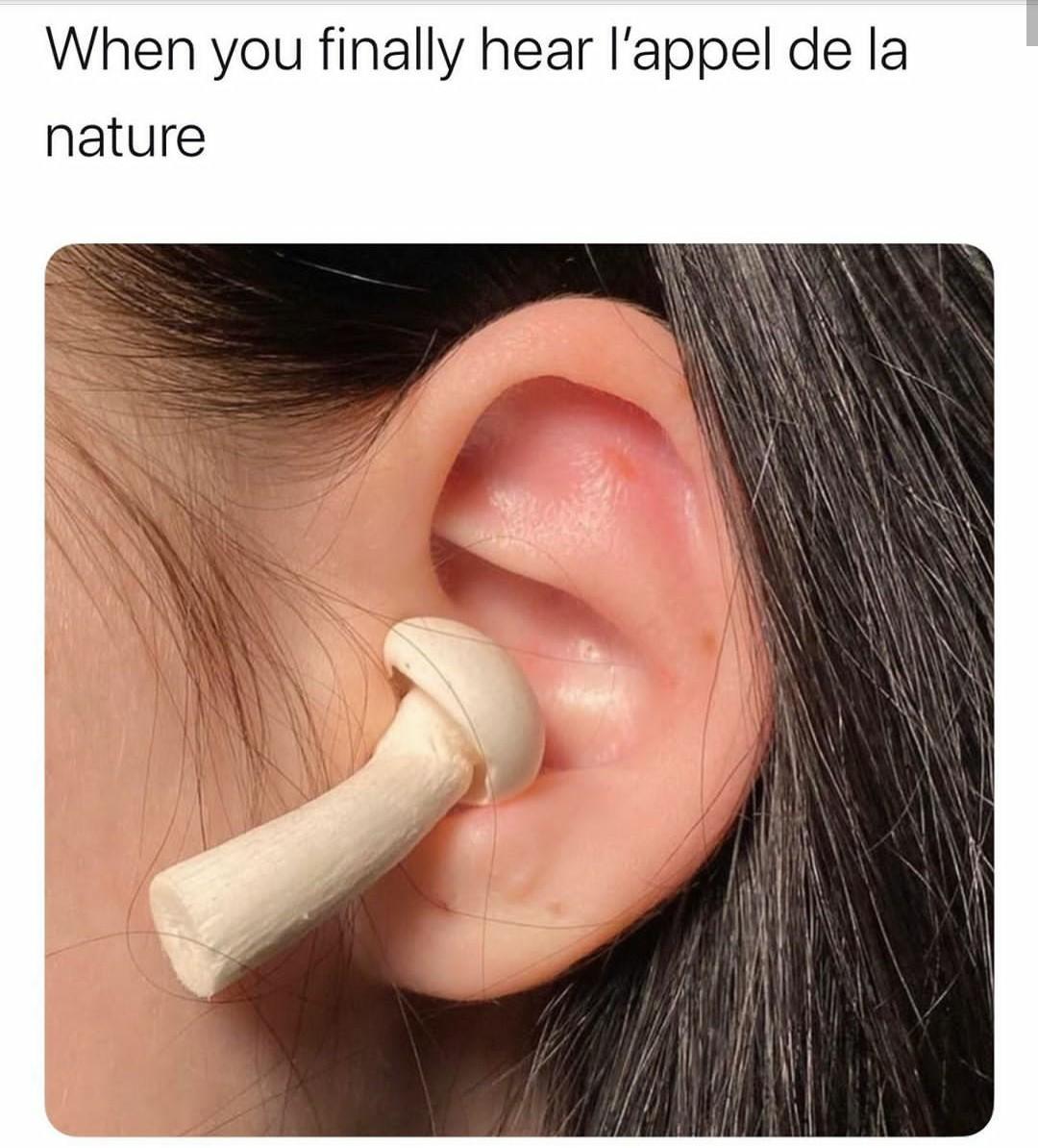 J'entends l'appel de la nature grâce à mes champipods - meme