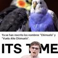 ya paren con chimuelo >:(