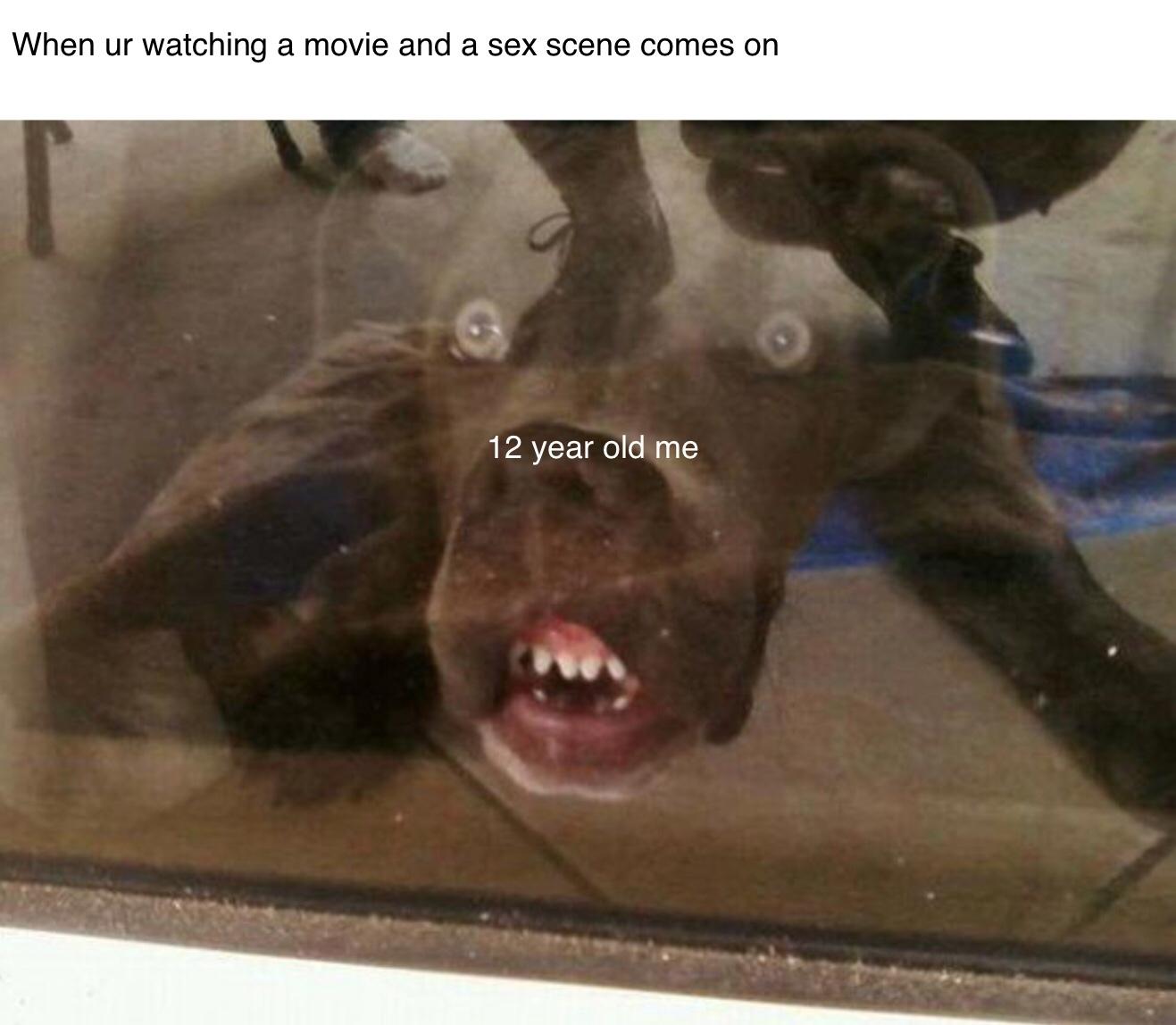 12 year old me - meme