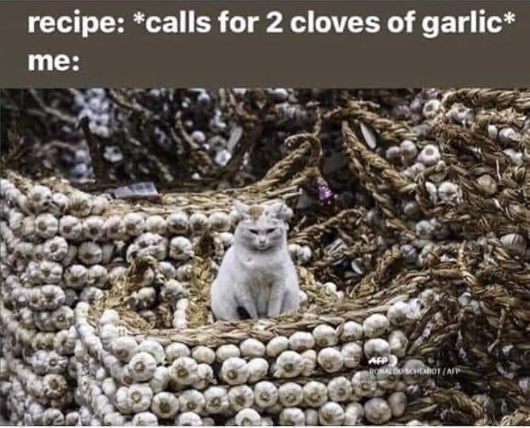 protecter of the garlic - meme