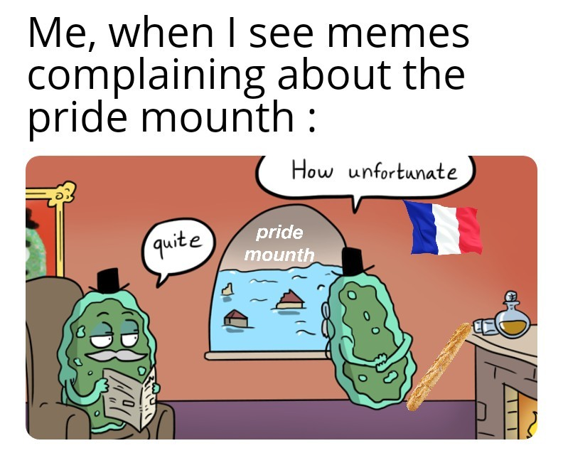 we don't have a pride mounth - meme