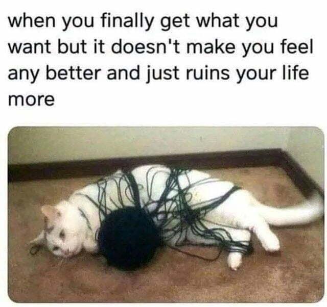 MistakesAreMade - meme