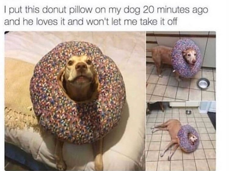 donut boy - meme