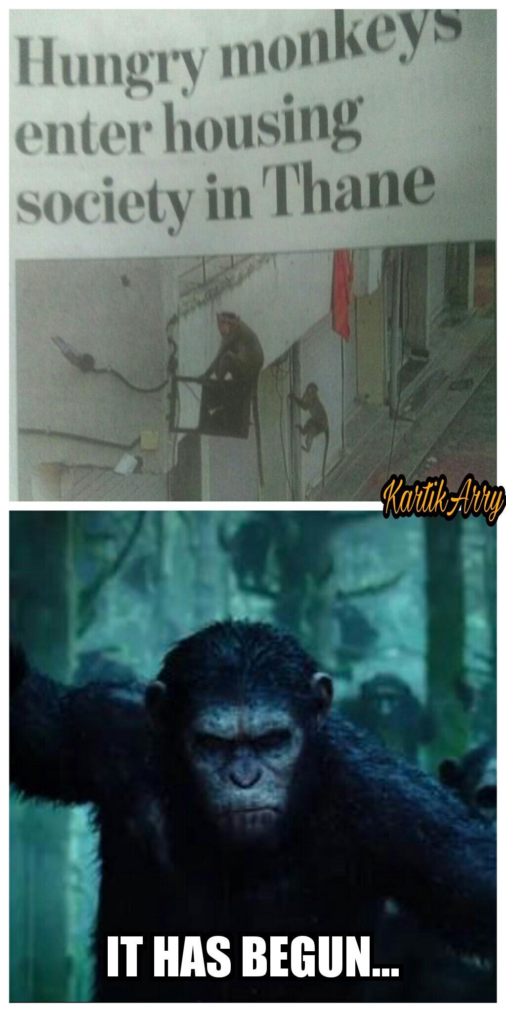 War... - meme