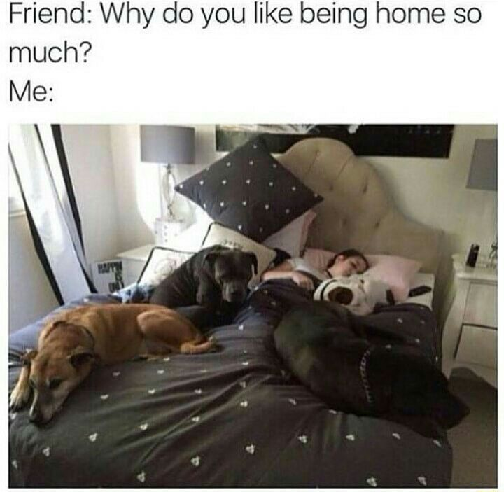 I have my best friends there! - meme