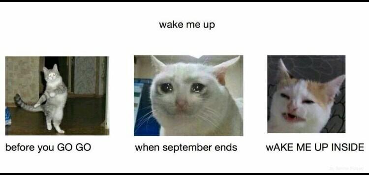 Hoy no me puedo levantar - meme