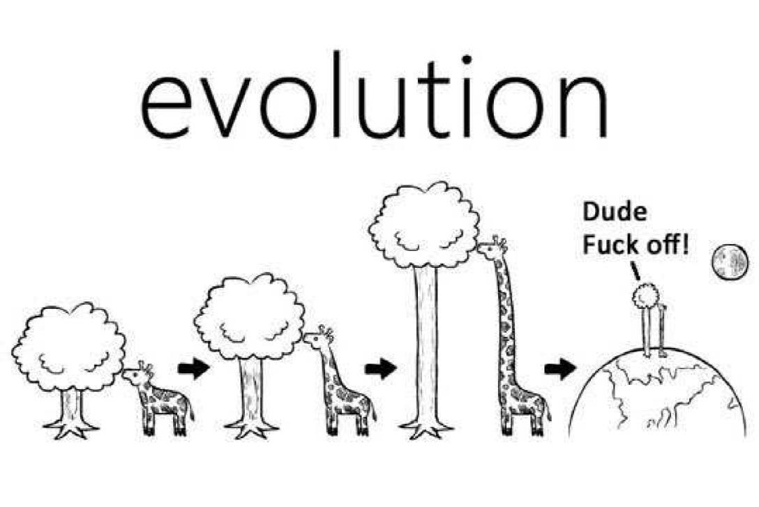 Evolution - meme