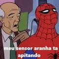 pau na aranha