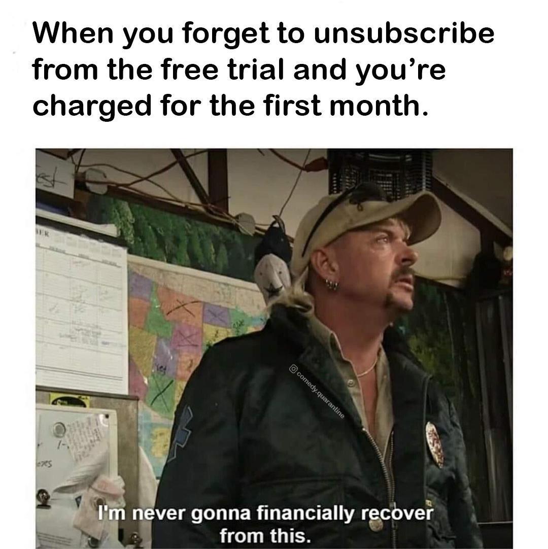 Netflix damage - meme