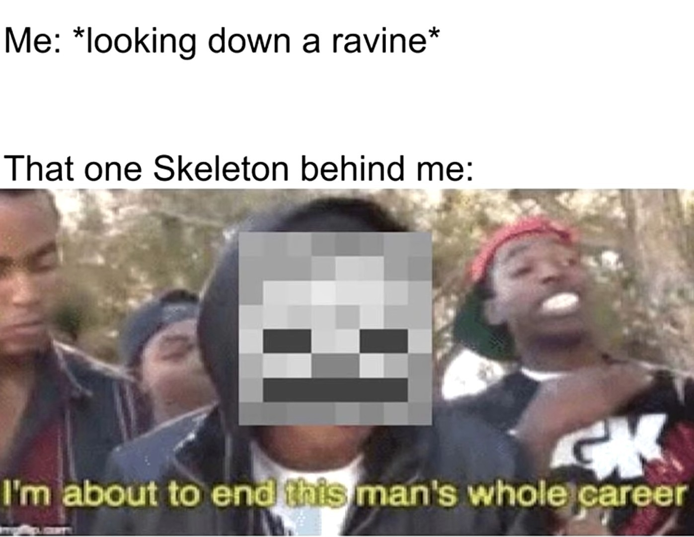 Minecraft Diaries - meme