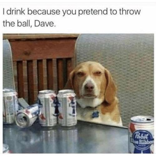 Look what you did, Dave - meme
