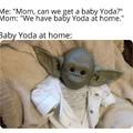 Baby Yoda... At home.