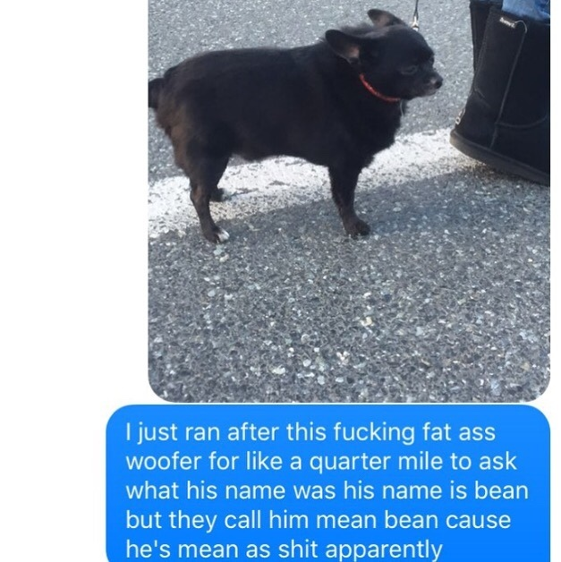 Mean bean - meme