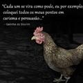 Mate a galinha