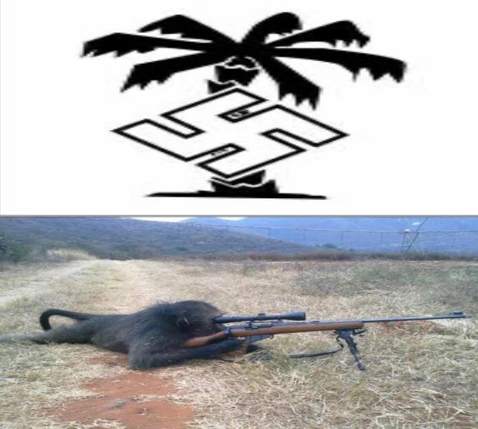 Africa korps - meme