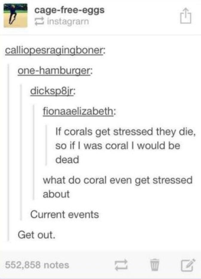 Corals - meme