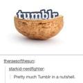 Fuck Tumblr