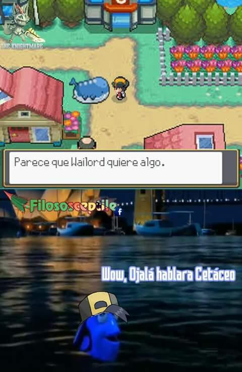 Ballenas - meme