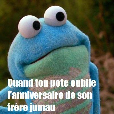 grenouille2 - meme