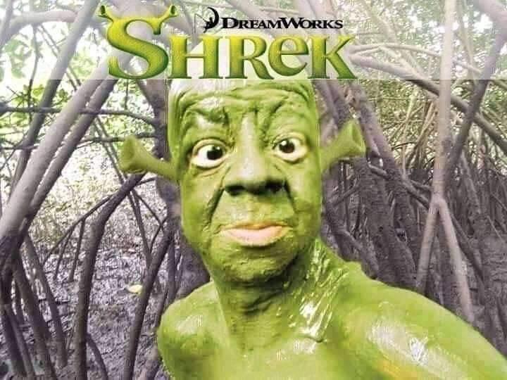 Shrek Live Action - meme